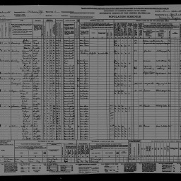 Ten Things You Didn't Know About Census Records